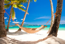 Carnival Cruise 87% Off!