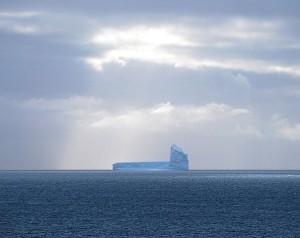 First iceberg