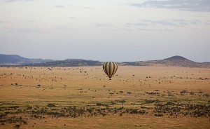 Adrift Over the Serengeti