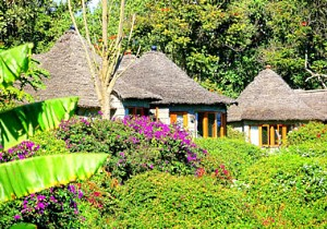 Serena Mountain Village Lodge