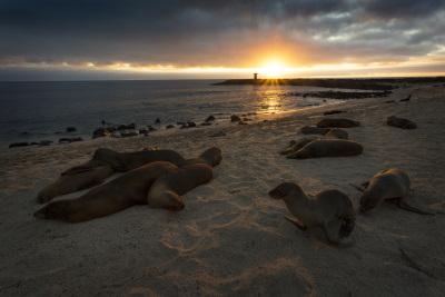 San Cristobal, Galapagos Islands, Ecuador