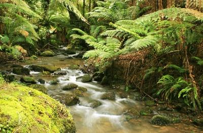 Hunter River, Australia