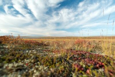 Gjoa Haven, Nunavut, Canada