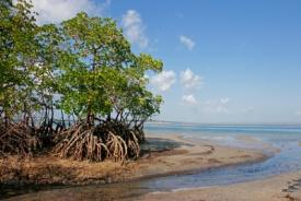 Portuguese Island, Mozambique