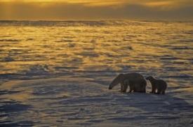 Praia de Fury, Nunavut, Canadá