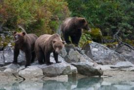 Porto Geográfico, Alaska, EUA