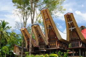 Sulawesi, Indonésia