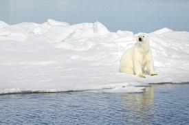 Parque Nacional del sur de Spitsbergen