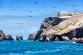 Isla Lobos de Tierra, Perú