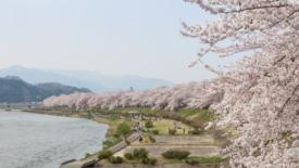Akita, Japón