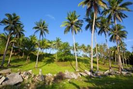 Donsol, Filipinas