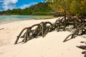 Vona Vona Lagoon, Islas Solomon