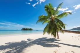 Conception Island, Bahamas