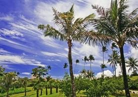 Guam, Territorio de los EEUU