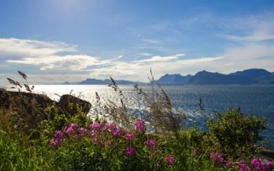 Innvikfjorden, Norvège
