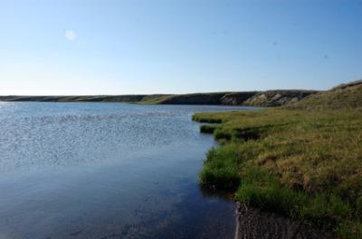 Kolyuchin Bay, Russia