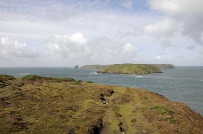 Ilha de Skomer, Reino Unido