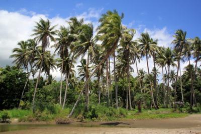 Anelghowhat, Aneityum Island, Vanuatu
