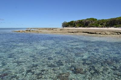 Lady Musgrave Island, Australia